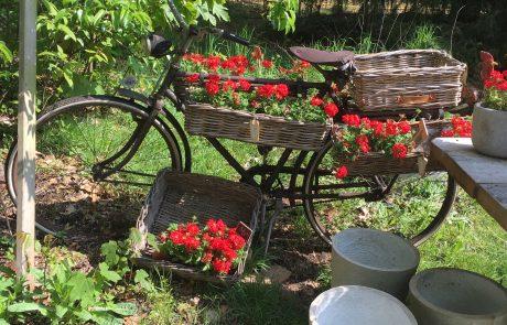 Gourmet & Garden